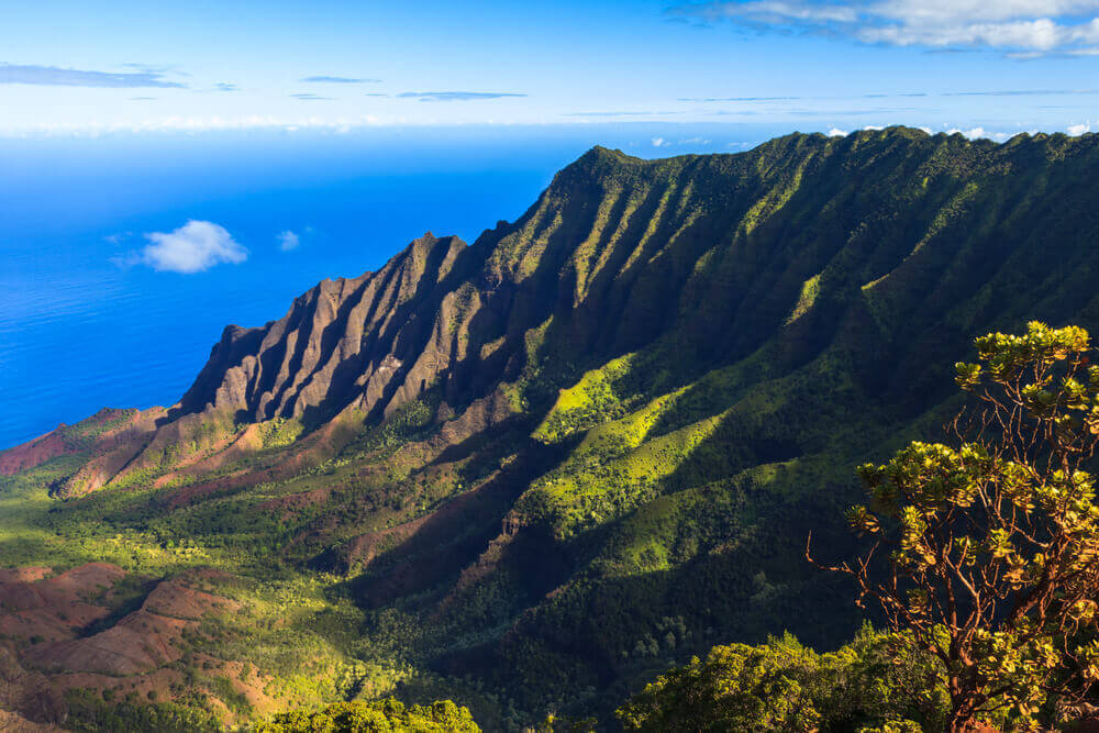 About us: Kauai Digital Marketing